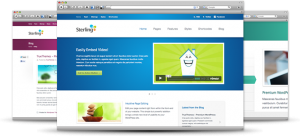 Premium WordPress Theme Designer